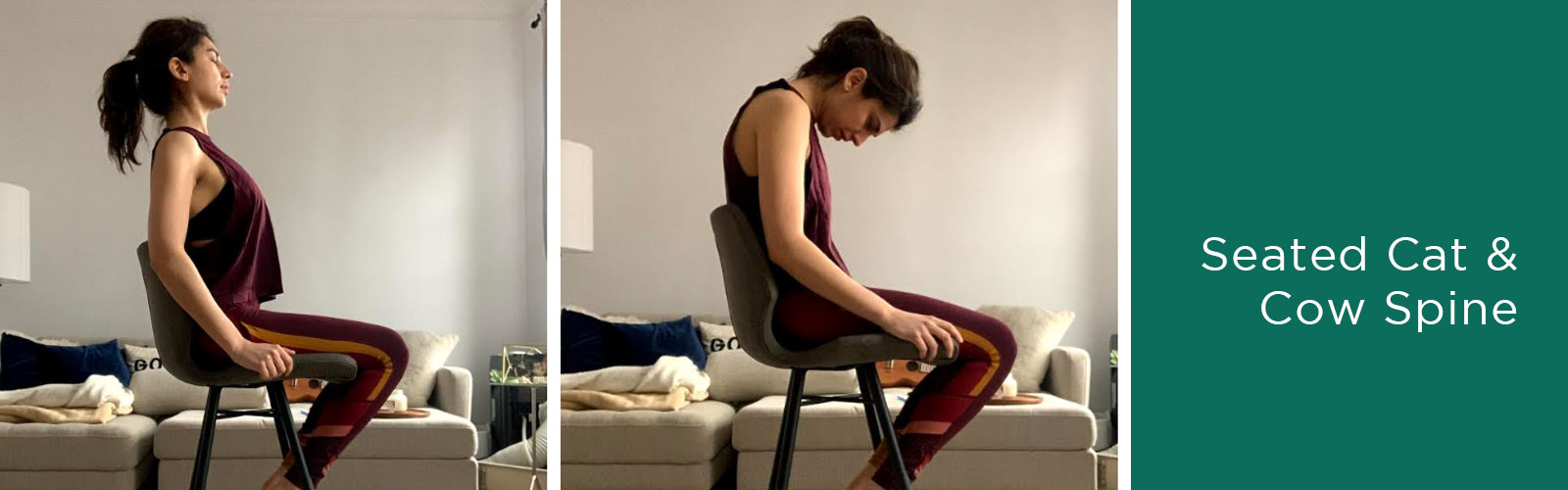 How to do desk yoga seated cat cow spine for sore back and neck